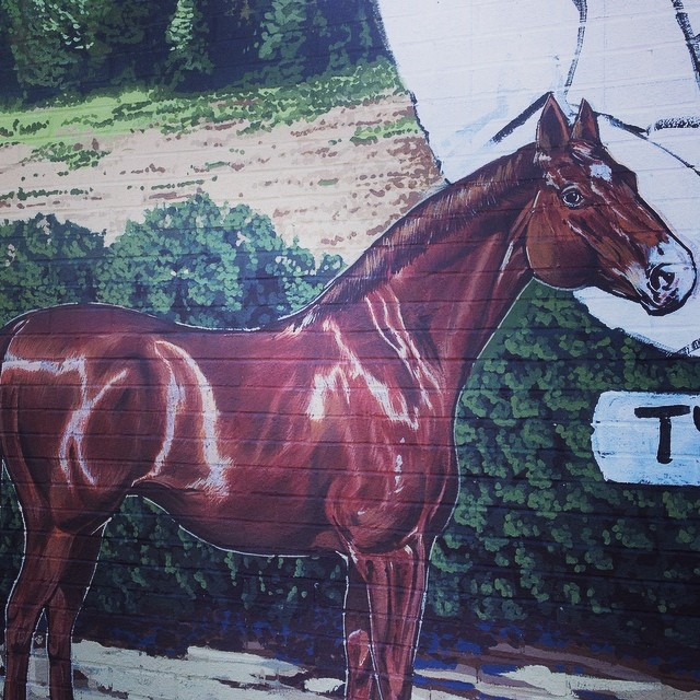Detail of the Tyson & Jones buggy mural for Carthage. This horse is named #sweetchuck